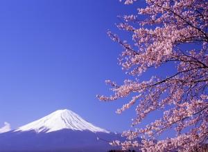 Mariage au japon